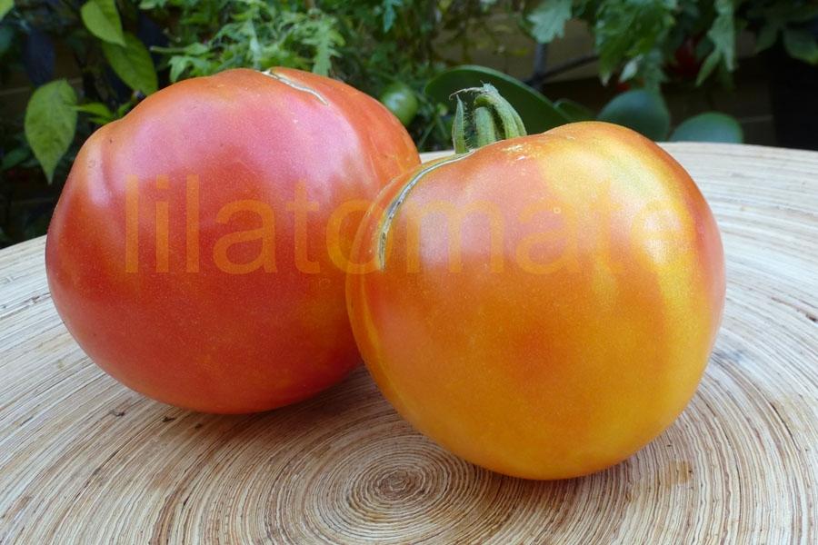 Tomate 'Ruby Gold' Saatgut