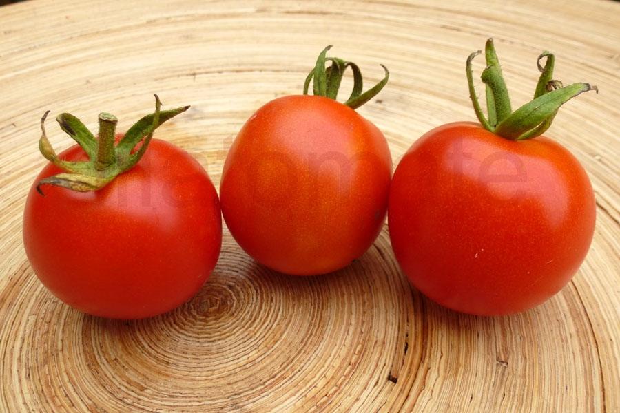 Tomate 'Deutsche Fleiß' Saatgut
