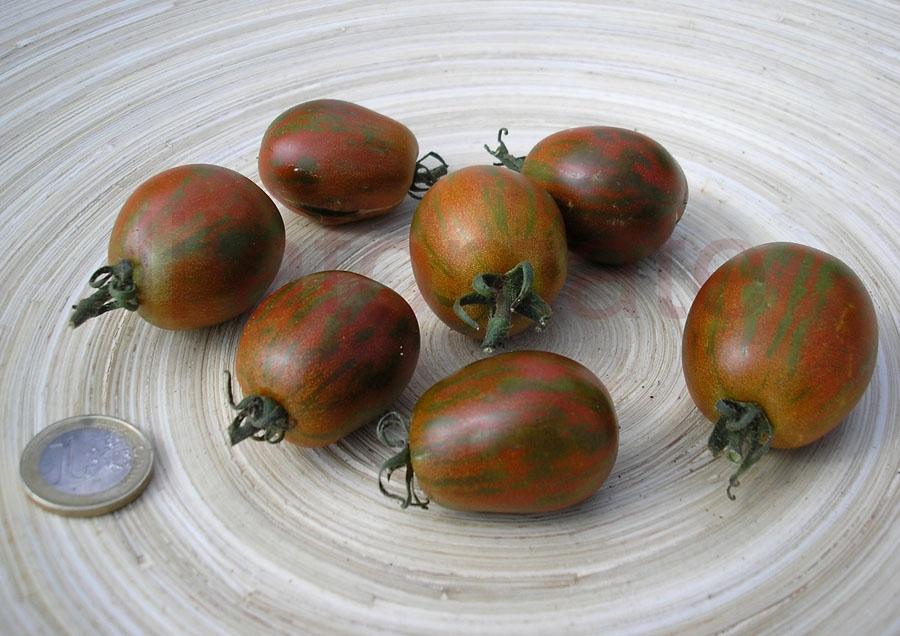 Tomate 'Gestreifte Cocktailtomate' (Arbeitstitel) Saatgut