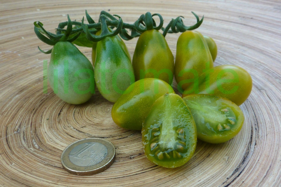 Tomate 'Green Pear' Saatgut