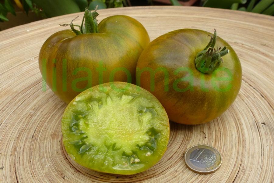 Tomate 'Smaragdapfel' Saatgut