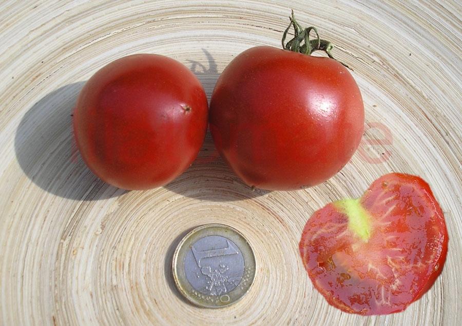 Tomate 'Frühzauber' Saatgut