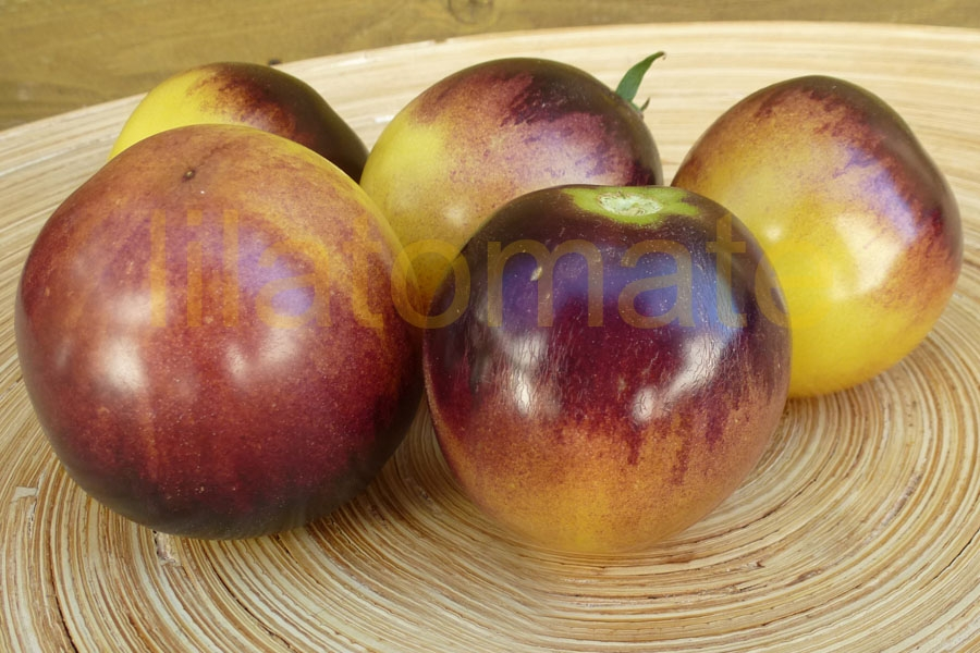 0 Tipps zur Tomatensortenauswahl
