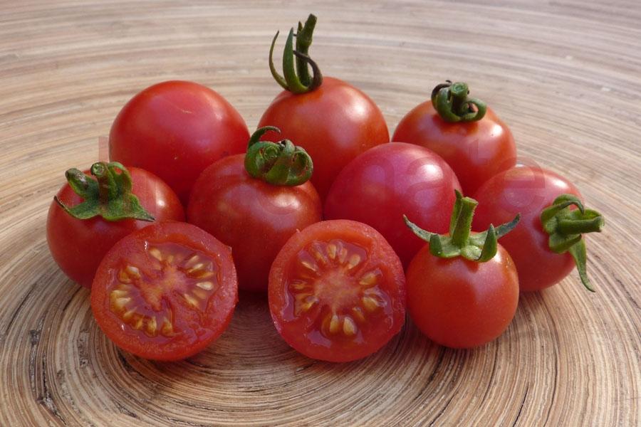 Tomate 'Humboltii Wildtomate' Saatgut