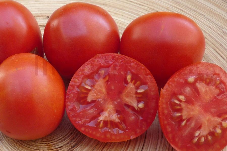 Tomate 'Haubners Vollendung' Saatgut