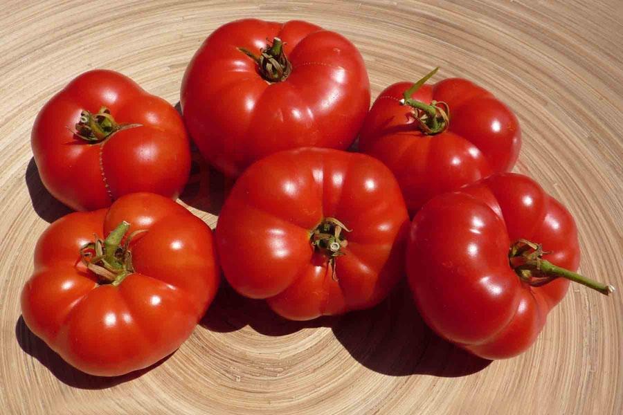 Tomate 'Carrot like' Saatgut
