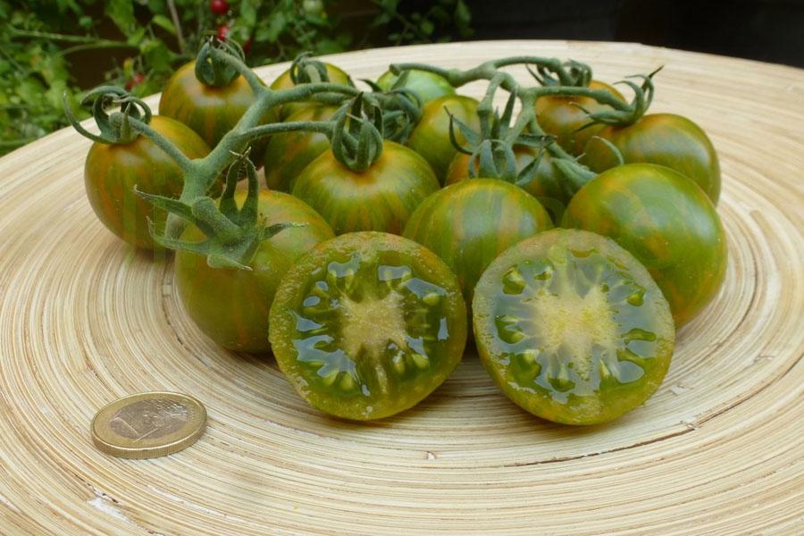 Tomate 'Grüne Zebra, Cherry'  Saatgut ('Green Zebra, Cherry')
