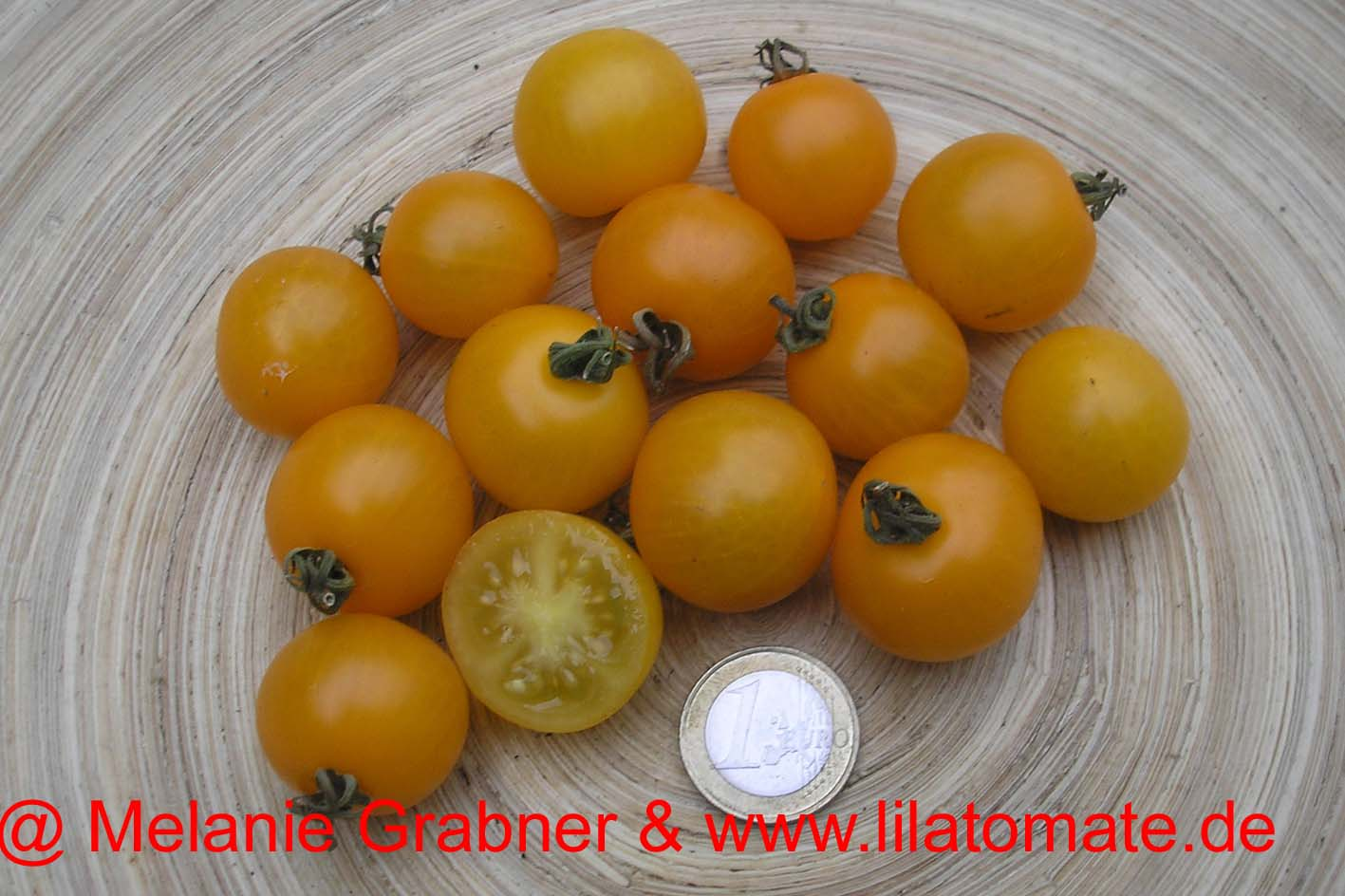 Tomate 'Sonnenschein, Yellow Tumbler' Saatgut