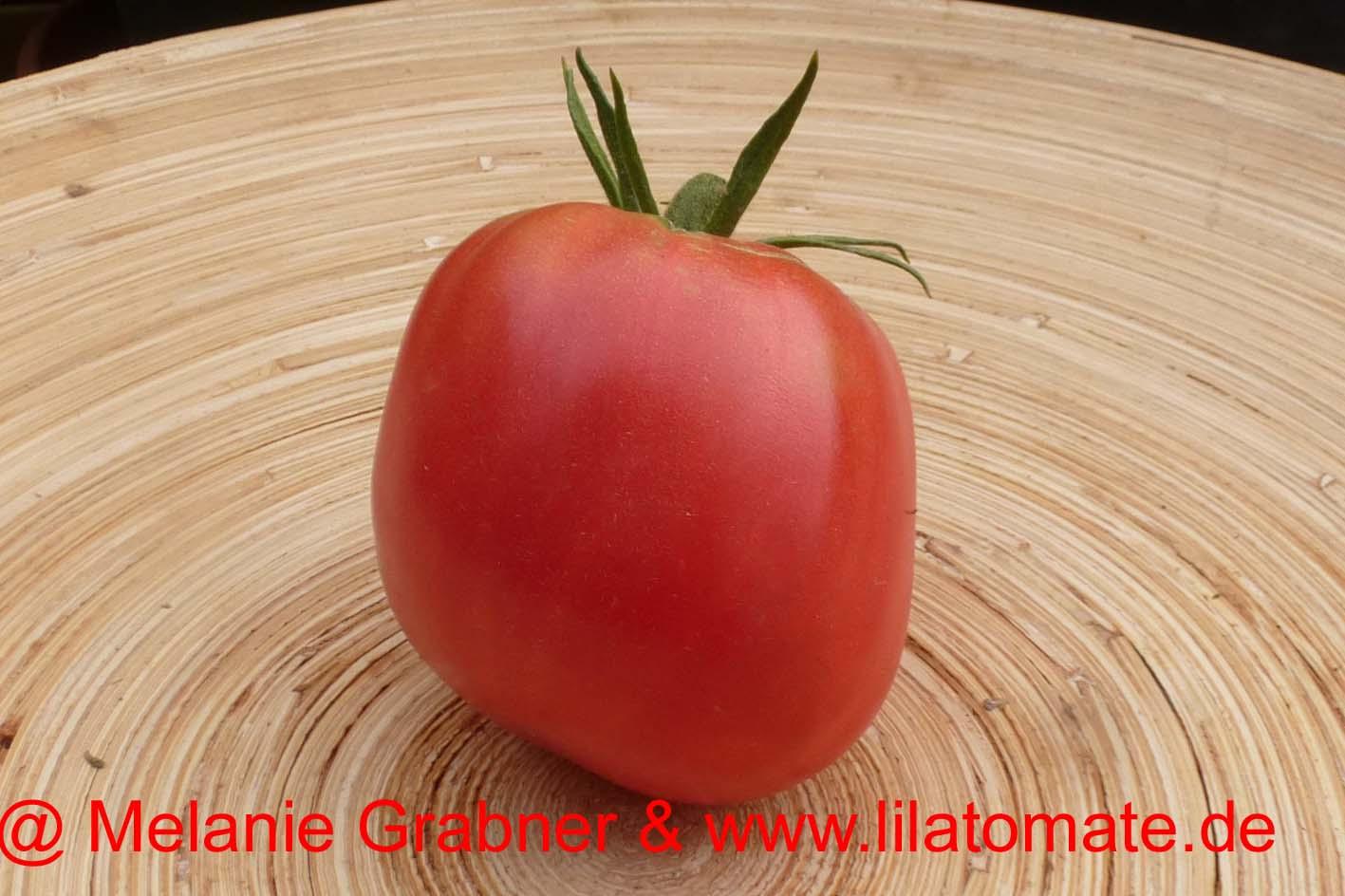 Tomate 'Herztomate aus Neuseeland' (Arbeitstitel) Saatgut