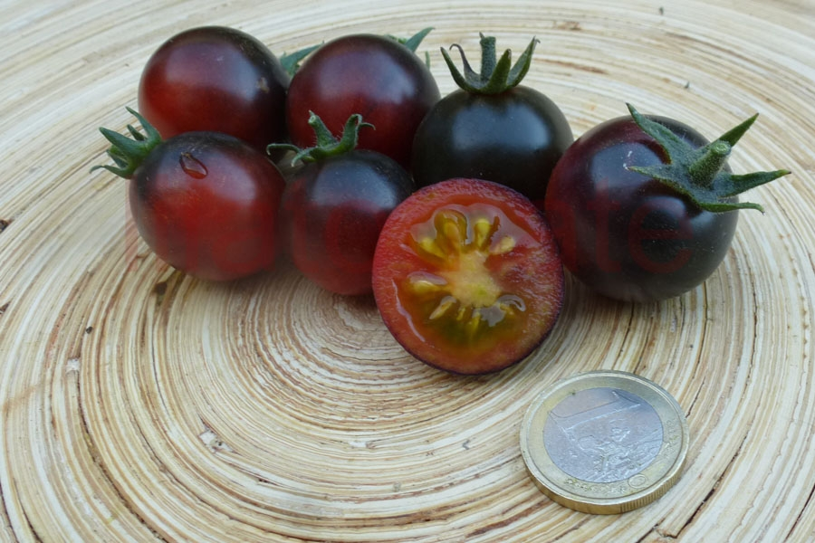 Tomate 'Black Eagle' Saatgut