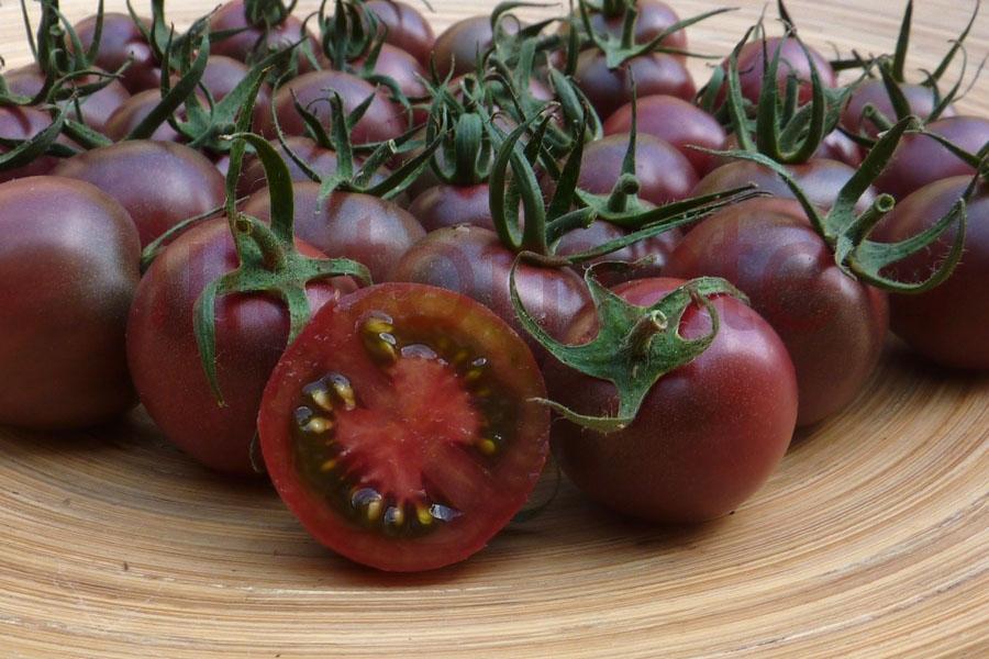 Tomate 'Cherry Black' Saatgut