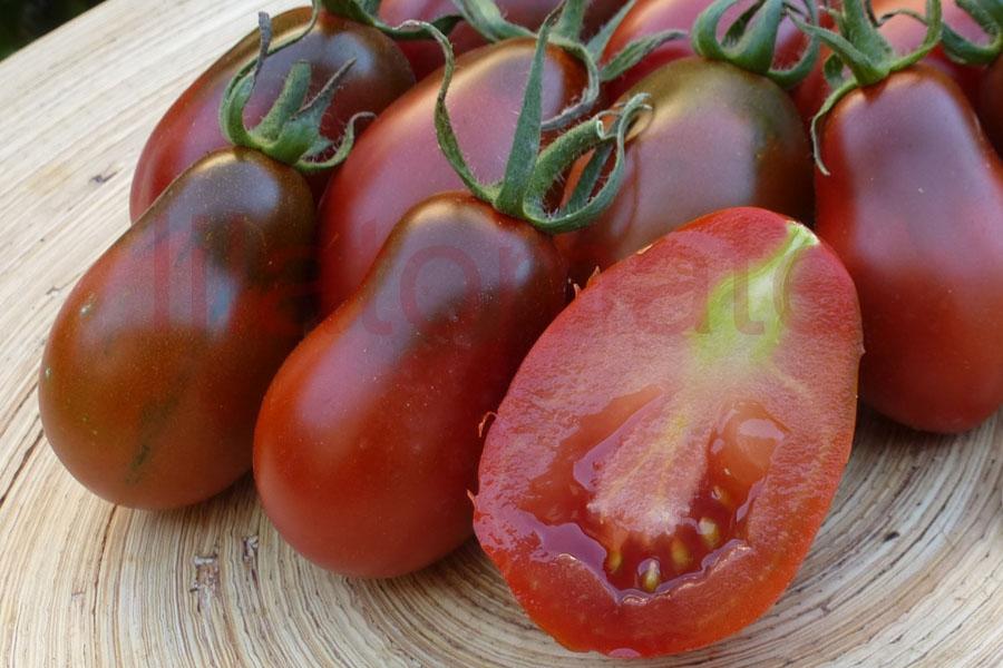 Tomate 'Black Plum, birnenförmig' (Arbeitstitel) Saatgut